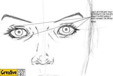 Drawing Basics – The Facial Features